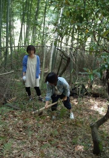 竹の子-02