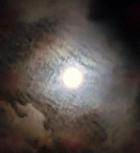 2014年9月9日(21:53)撮影
