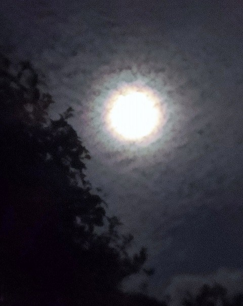 月の光環 2014年9月9日(22:04)撮影