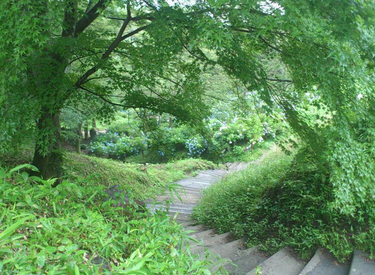 二本松城 (7)