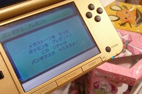 pokemon_051a.jpg