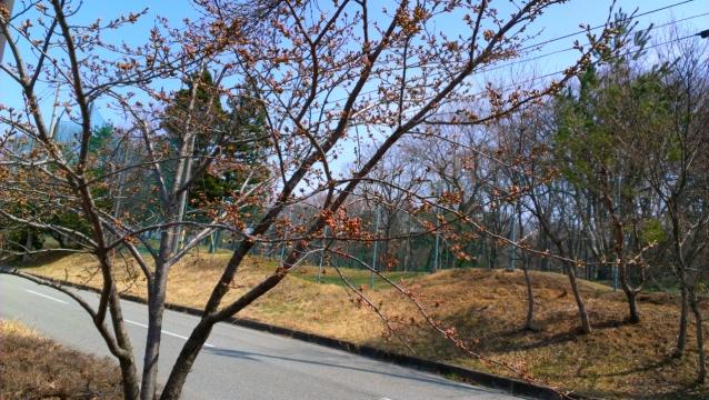 2014-04-15_10-31-58.jpg