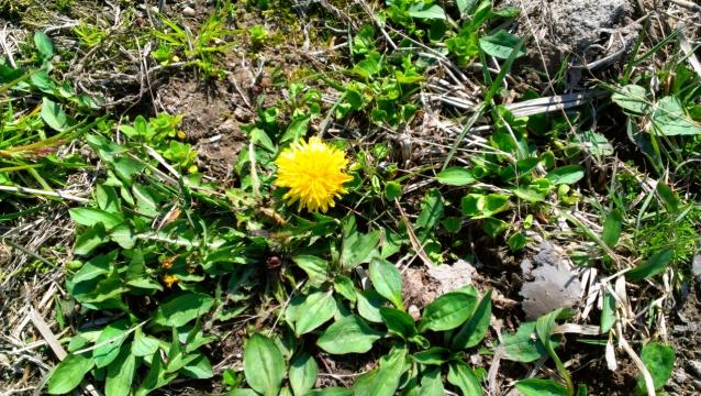 2014-04-22_09-29-00.jpg