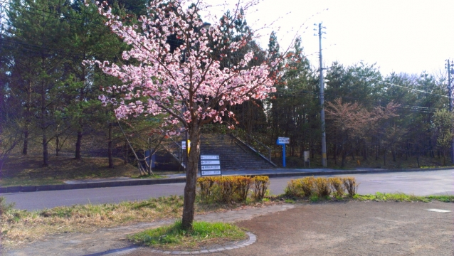 2014-04-22_15-53-30.jpg