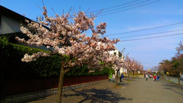 2014-04-22_15-56-50.jpg