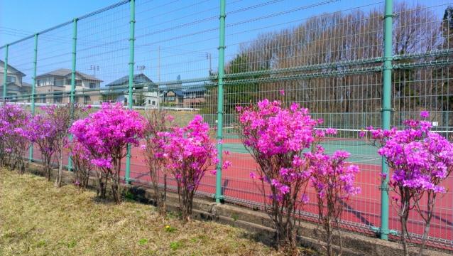 2014-04-25_10-16-58.jpg