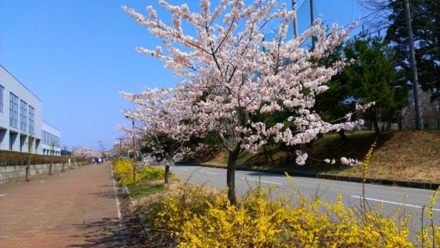 2014-04-25_10-19-57.jpg