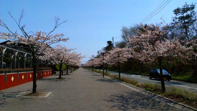 2014-04-25_10-23-38.jpg