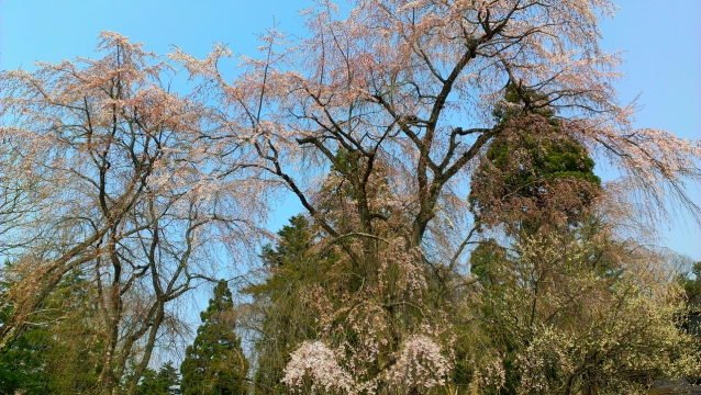 2014-04-26_13-54-53.jpg