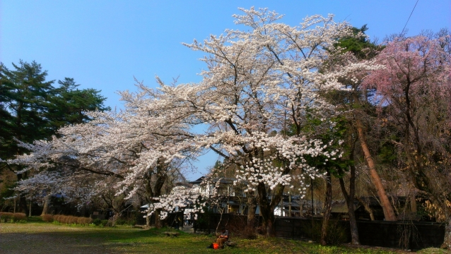 2014-04-26_14-56-24.jpg