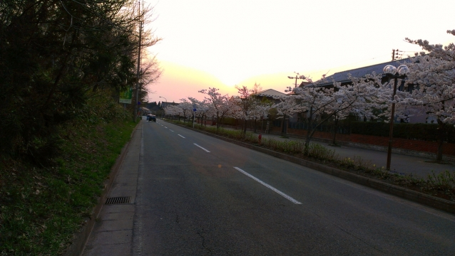 2014-04-26_17-50-01.jpg