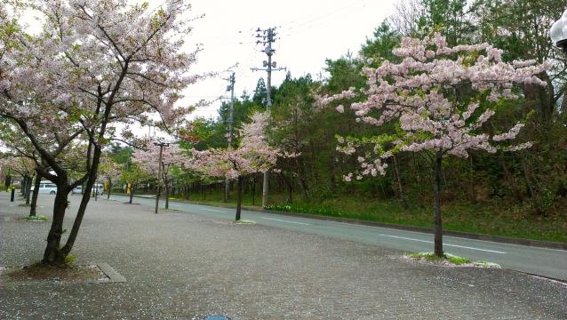 2014-04-30_10-20-06.jpg