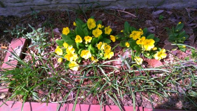 2014-04-15_10-42-01 - コピー