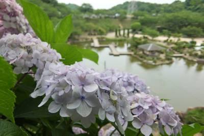 risaizu種松山1455