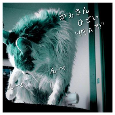 IMG_5538a.jpg