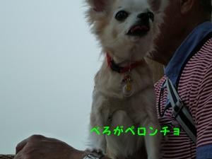 ブログ用P1030613-20140522-152015