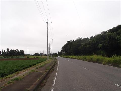 S-2P8160006.jpg