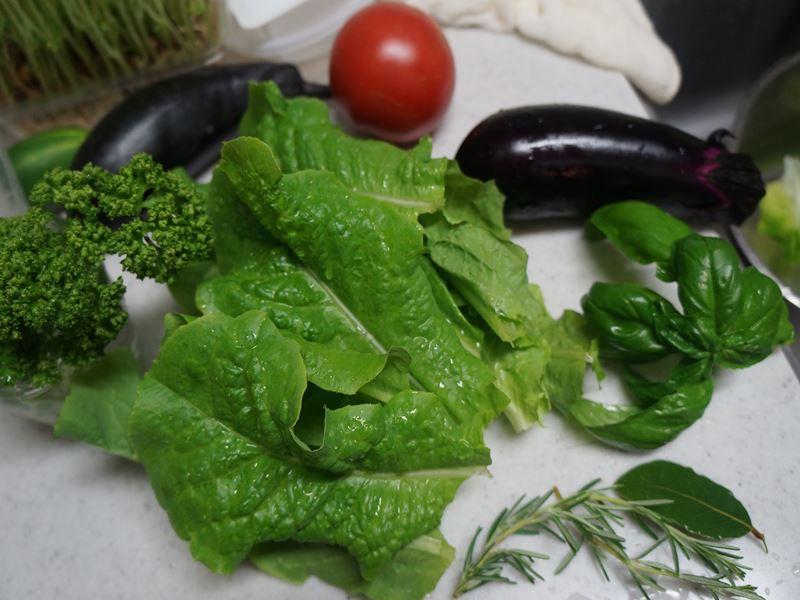 採れたての野菜