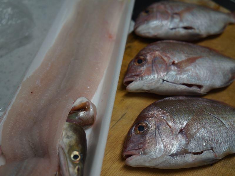 夕ご飯の材料 鯛と鱧