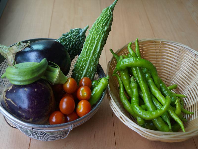 お持ち帰りの野菜