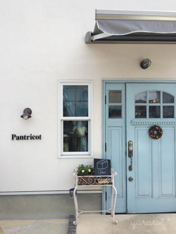 pantricot_convert_20140422022713