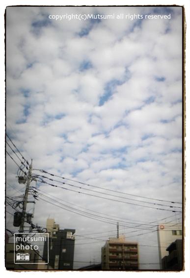 uroko-4.jpg