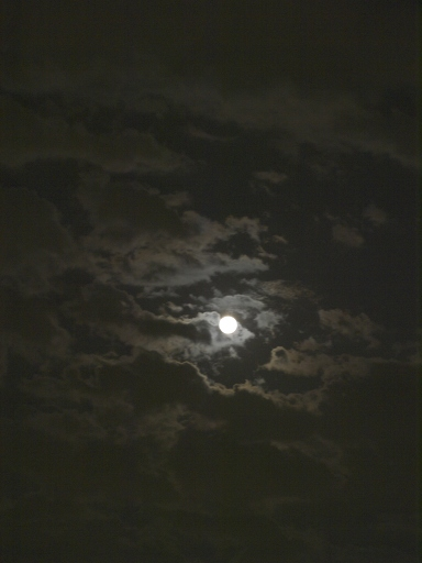 月と雲と夜