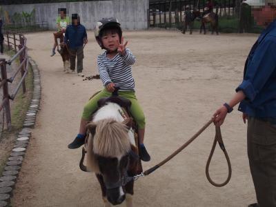 ポニー乗馬