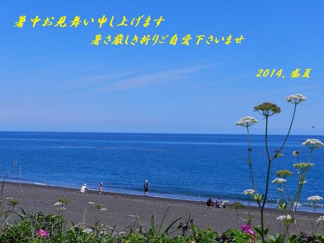 DSCN0257_2014072118112901c.jpg