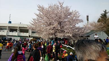 長野マラソン2014