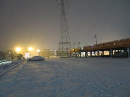 雪(20140208)
