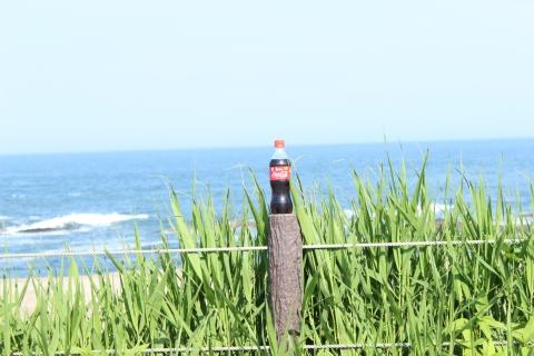 海とコカ・コーラ(20140530)