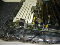 DSC01065_RS.jpg
