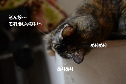 11_20140710152901cc0.jpg