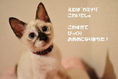 2_20140708174534ee3.jpg