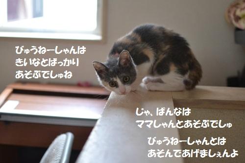 8_20140710152837e23.jpg