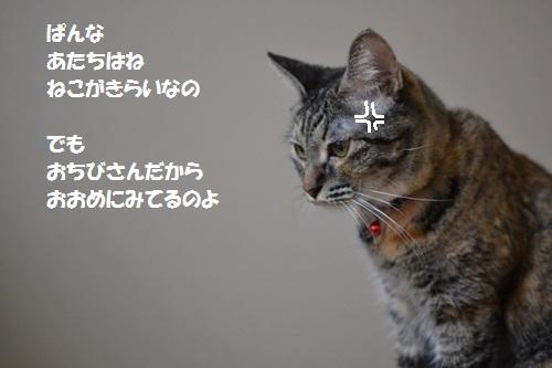 9_2014071015283981d.jpg