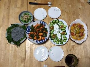 food1499.jpg