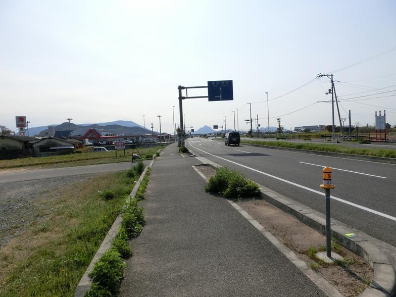 CIMG6846_R.jpg