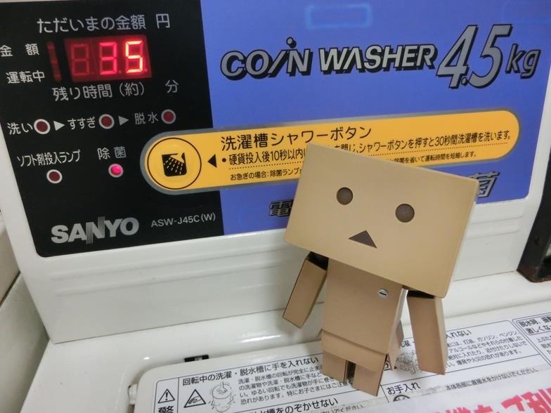 CIMG8564_R.jpg