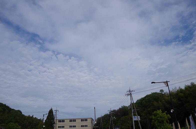 IMGP8116_R.jpg