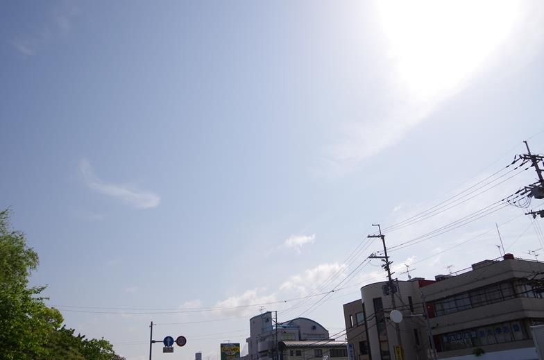 IMGP8239_R.jpg