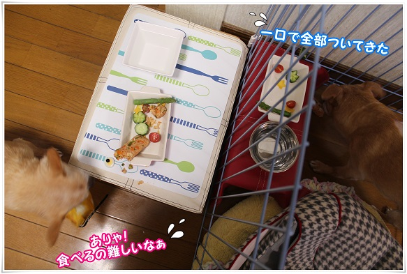 IMG_4800muzukasii.jpg