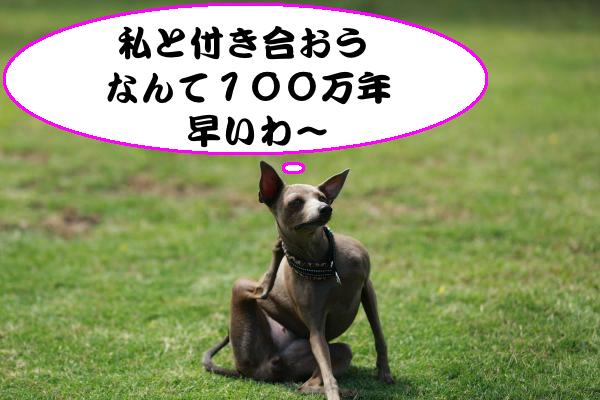 IMG_8104_convert_20140609200906.jpg