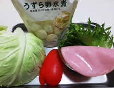 カレースパサラダ 材料②