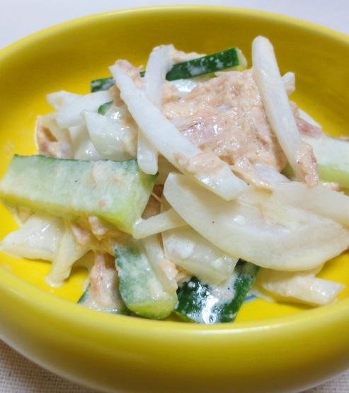 新玉ねぎとツナのマヨサラダ B