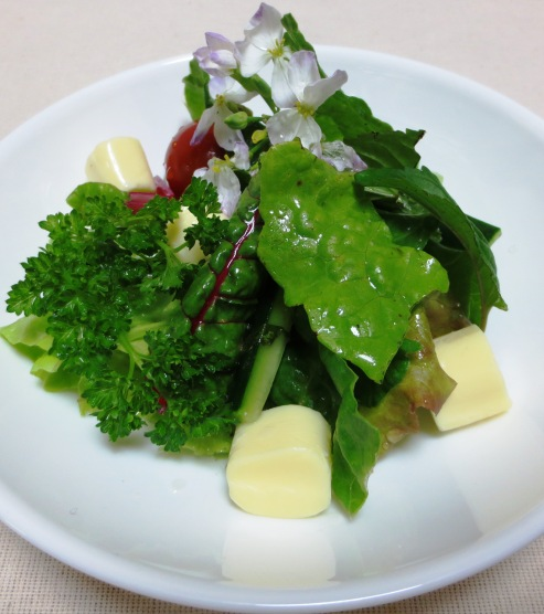 鎌倉野菜 ベビーリーフサラダ 大