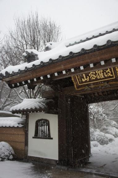 2014大雪 お寺
