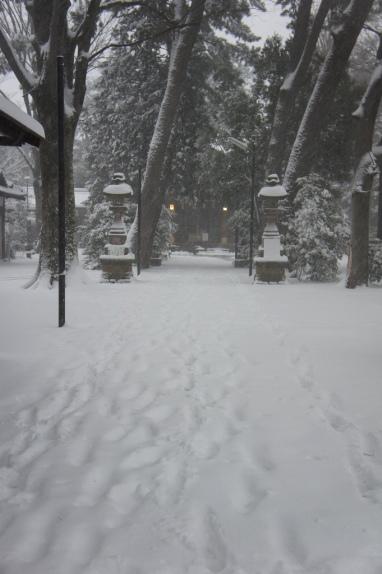 2014大雪 神社