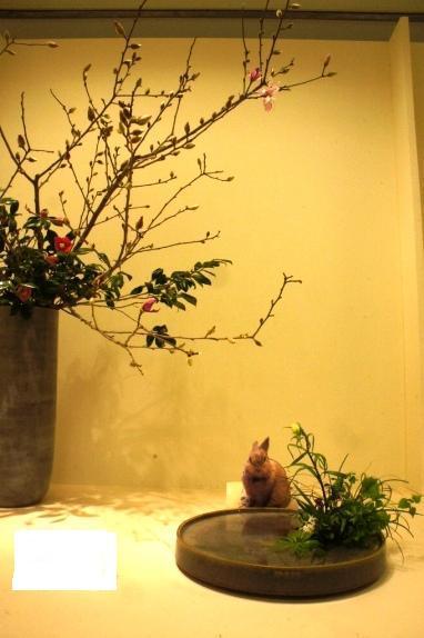 2014春花展 うめ様侵入①